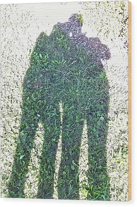 Wood Print featuring the photograph Shadow In The Meadow by Wilhelm Hufnagl