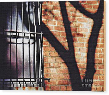 Shadow On The Wall Wood Print by Sarah Loft