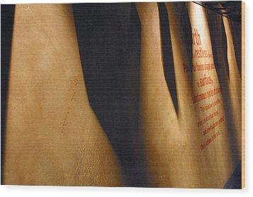 Shadowed Earth Wood Print by Jez C Self