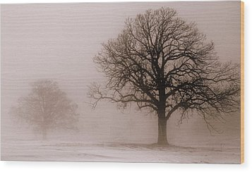 Shadows In The Fog Wood Print by Linda Mishler