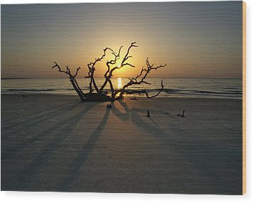 Shadows Of Driftwood Wood Print