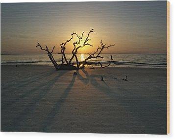 Shadows Of Driftwood Wood Print by Greg Mimbs