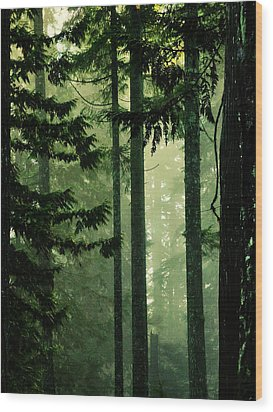 Shadows Of Light Wood Print by Connie Handscomb