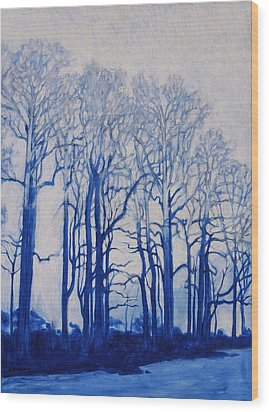 Shadows Of Winter Wood Print by Andrew Danielsen