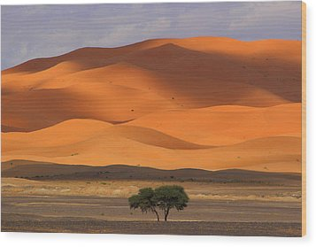 Wood Print featuring the photograph Shadows On The Dunes by Ramona Johnston