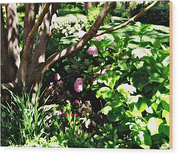 Wood Print featuring the photograph Shadows Through The Garden by Glenn McCarthy Art and Photography