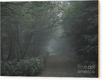 Shady Lane Wood Print by Stan and Anne Foster