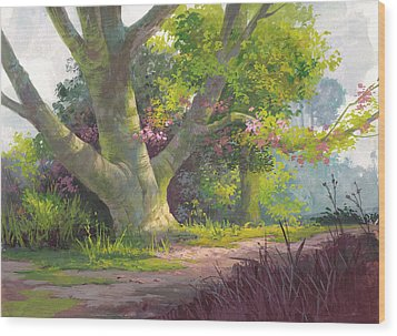Shady Oasis Wood Print by Michael Humphries