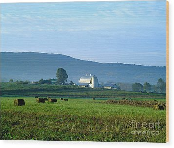 Shady Valley Farm Wood Print