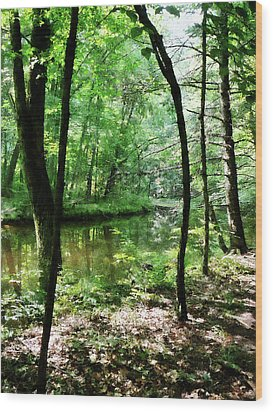 Shady Woods Wood Print by Susan Savad