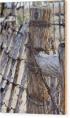 Wood Print featuring the photograph Shaggy Fence Post by Phyllis Denton