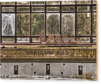 Shallow End Wood Print by Evelina Kremsdorf