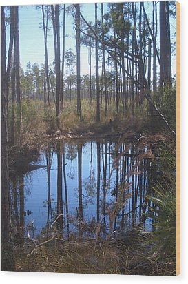 Shallow Pond Wood Print