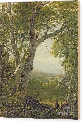 Shandaken Ridge - Kingston Wood Print by Asher Brown Durand