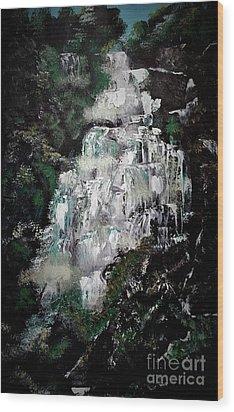 Shannon Falls Wood Print