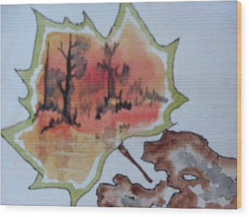 Shapes Of Nature Wood Print by Warren Thompson