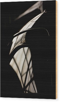 Wood Print featuring the photograph Shapes by Paul Job