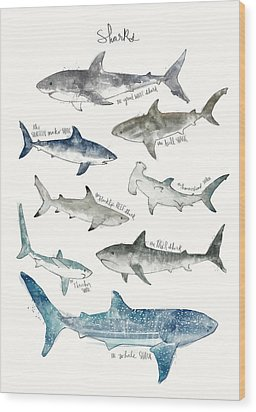 Sharks Wood Print by Amy Hamilton