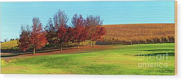 Wood Print featuring the photograph Shaw And Smith Winery by Bill Robinson