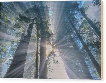 Wood Print featuring the photograph Shazam by Patricia Davidson