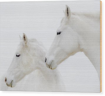 She Dreamed Of White Horses Wood Print by Ron  McGinnis