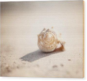 She Sells Sea Shells Wood Print by Lisa Russo
