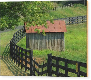 Shed And Fence Wood Print by Michael L Kimble