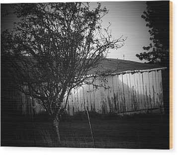 Shed  And Tree Wood Print by Michael L Kimble