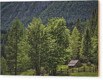 Wood Print featuring the photograph Shed In The Slovenian Alps by Stuart Litoff