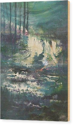 Sheen Falls Wood Print by Joyce Garvey