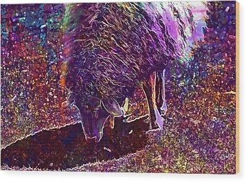 Wood Print featuring the digital art Sheep Animal Animals Wool Meadow  by PixBreak Art