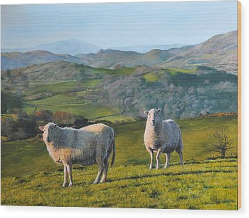 Wood Print featuring the painting Sheep At Rhug by Harry Robertson