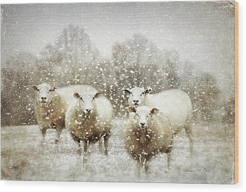 Wood Print featuring the photograph Sheep Gathering In Snow by Bellesouth Studio