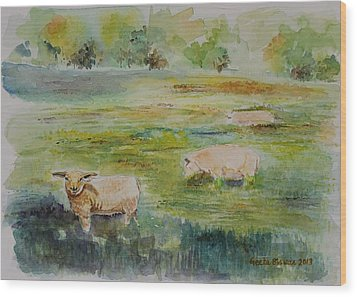Sheep In Pasture Wood Print by Geeta Biswas