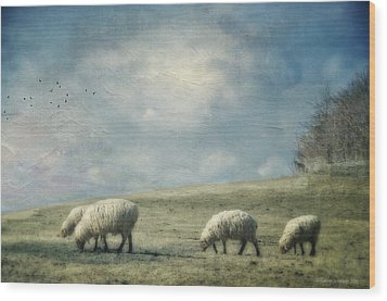 Sheep On The Hill Wood Print by Kathy Jennings