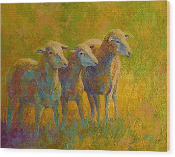 Sheep Trio Wood Print