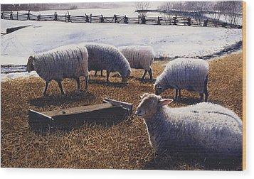 Sheepish Wood Print by Denny Bond