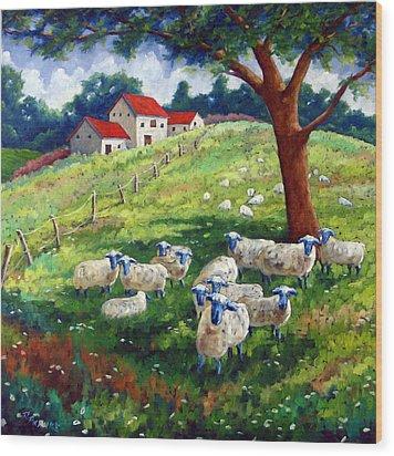 Sheeps In A Field Wood Print by Richard T Pranke