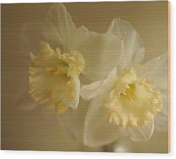 Sheer Daffodils Wood Print by Beverly Cazzell