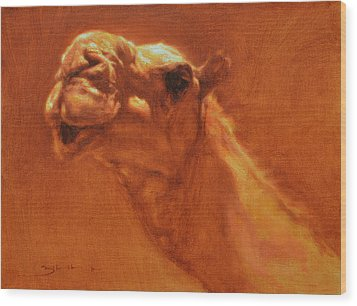 Sheikh Jamel Wood Print by Ben Hubbard