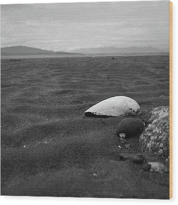 Shell And Sand Wood Print