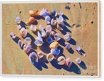 Wood Print featuring the photograph Shell Collection by Roberta Byram
