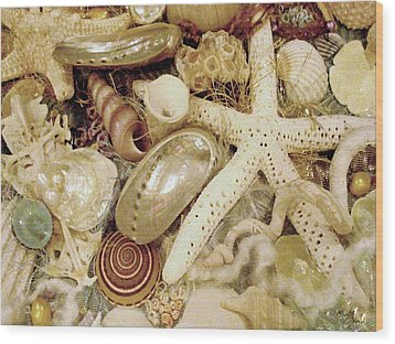 Wood Print featuring the photograph Shell Collection by Rosalie Scanlon