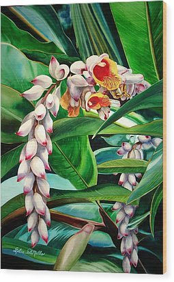 Shell Ginger Wood Print