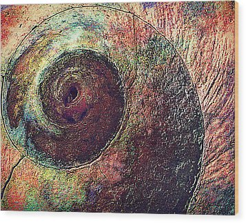 Wood Print featuring the photograph Shelled by Lori Seaman
