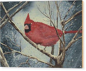 Shelly's Cardinal Wood Print by Sam Sidders