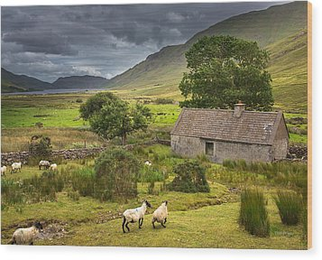 Shelter For Centuries Wood Print by Tim Bryan