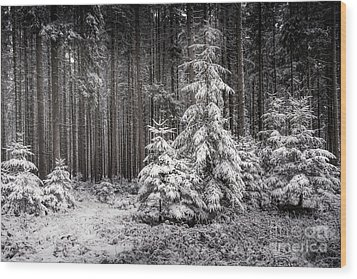 Wood Print featuring the photograph Sheltered Childhood by Hannes Cmarits