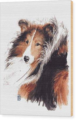 Sheltie Wood Print