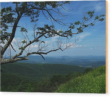 Shenandoah Beauty Wood Print
